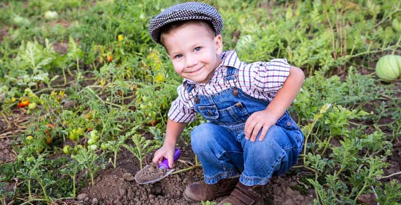Natura una passione da coltivare fin da bambini vendita for Piante da orto vendita online